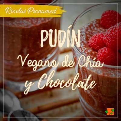 Pudín vegano de</br> chía y chocolate