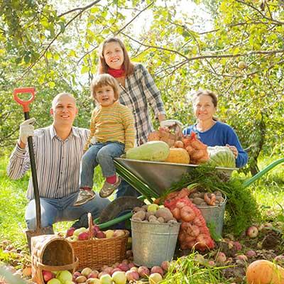 Importancia de los alimentos orgánicos en la nutrición infantil