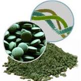 Alga Espirulina y sus cualidades