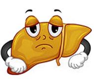 Hígado Graso o Esteatosis hepática.