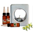 Pack Difusor con 3 Aceites Difusores