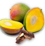 Mango Africano para Quemar Grasas